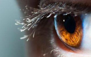 Что такое ретиношизис сетчатки, как остановить прогрессирование и вылечить болезнь