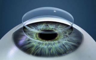 Анатомия органа зрения: строение и основные функции