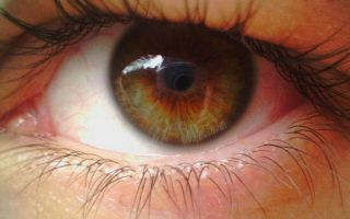 Дистрофия сетчатки глаза: профилактика и лечение