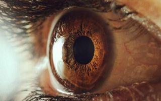 Особенности травматической катаракты и как от нее не ослепнуть?