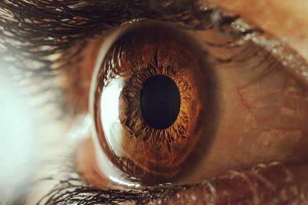 Глаз после травмы