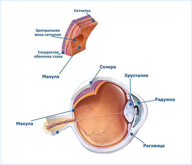 Отеки глазами после операции